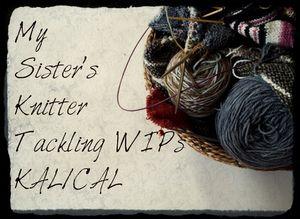 Knitting 053 (800x583)